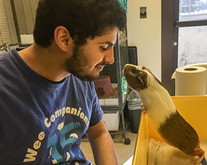 Animal care is a rewarding vocational skill